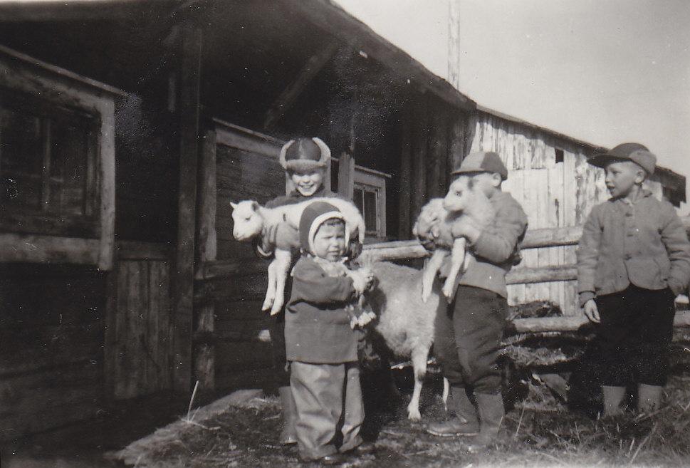 Lapset ja karitsat